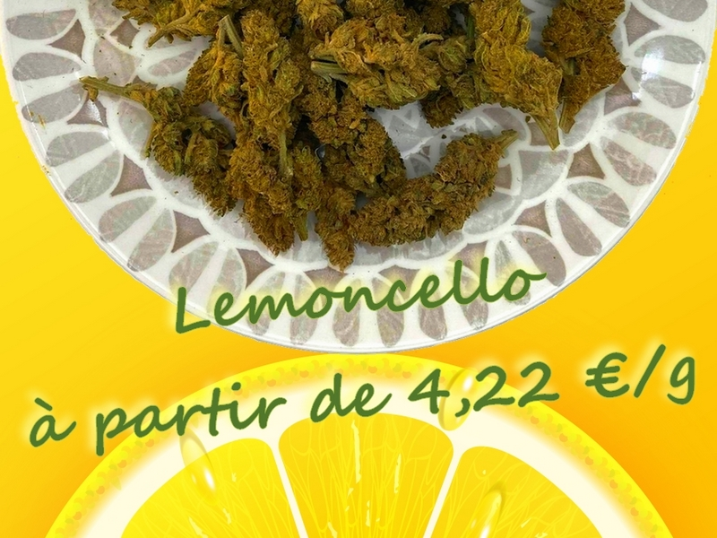 lemoncello citron cbd4